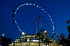 Ιπτάμενο Σινγκαπούρης Στοκ Φωτογραφίες