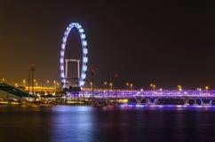 Ιπτάμενο της Σιγκαπούρης Στοκ Εικόνες