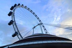 Ιπτάμενο της Σιγκαπούρης Στοκ φωτογραφίες με δικαίωμα ελεύθερης χρήσης