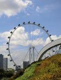 Ιπτάμενο της Σιγκαπούρης Στοκ Φωτογραφίες