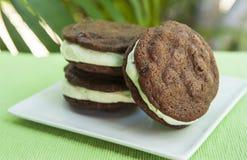 Διπλό σάντουιτς παγωτού μεντών τσιπ σοκολάτας Στοκ φωτογραφίες με δικαίωμα ελεύθερης χρήσης