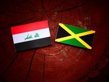 Ιρακινή σημαία με την τζαμαϊκανή σημαία σε ένα κολόβωμα δέντρων Στοκ φωτογραφία με δικαίωμα ελεύθερης χρήσης