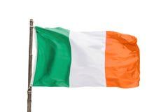 Ιρλανδική σημαία σε έναν ξύλινο πόλο που απομονώνεται στο άσπρο υπόβαθρο, Ιρλανδία Στοκ Εικόνες