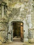 Ιρλανδία Mallow - Mala στοκ εικόνες