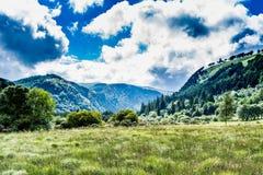 Ιρλανδικοί λόφοι το καλοκαίρι Στοκ εικόνες με δικαίωμα ελεύθερης χρήσης