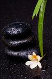 ισορροπώντας πέτρα zen Στοκ Εικόνες