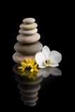 Ισορροπώντας zen πέτρες στο Μαύρο με το άσπρο λουλούδι Στοκ φωτογραφία με δικαίωμα ελεύθερης χρήσης