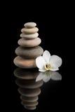 Ισορροπώντας zen πέτρες στο Μαύρο με το άσπρο λουλούδι Στοκ Εικόνα