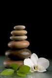 Ισορροπώντας zen πέτρες στο Μαύρο με το άσπρο λουλούδι Στοκ Φωτογραφία