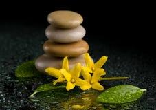 Ισορροπώντας zen πέτρες στο Μαύρο με το κίτρινο λουλούδι Στοκ Εικόνες