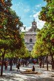 Ισπανία, Ανδαλουσία, Σεβίλη, ο πύργος κουδουνιών καθεδρικών ναών που βλέπει από το πορτοκαλί προαύλιο δέντρων 2019 στοκ φωτογραφίες