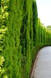 Ισπανία Γρανάδα Alhambra Generalife (6) Στοκ Εικόνα