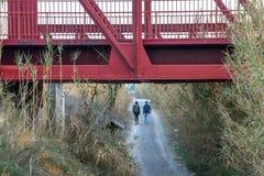 Ισπανία Περίπατος κατά μήκος του ποταμού Segura στο Murcia στοκ φωτογραφίες με δικαίωμα ελεύθερης χρήσης