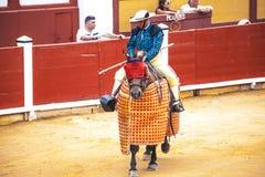 Ισπανική ταυρομαχία Picador με μια λόγχη σε ένα άλογο Ο εξοργισμένος ταύρος επιτίθεται στον ταυρομάχο Ισπανία 2017 07 25 2017 Vin στοκ φωτογραφία με δικαίωμα ελεύθερης χρήσης