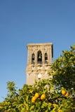 Ισπανικοί πορτοκάλια και πύργος κουδουνιών Στοκ φωτογραφίες με δικαίωμα ελεύθερης χρήσης