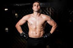 Ισπανικός μαχητής MMA σε ένα κλουβί Στοκ Εικόνες