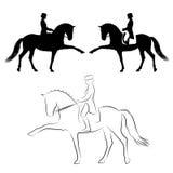 Ισπανικός περίπατος εκπαίδευσης αλόγου σε περιστροφές Στοκ Εικόνες