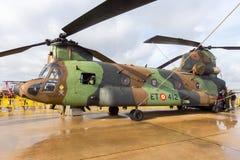 Ισπανικός στρατός Boeing CH-47 ελικόπτερο μεταφορών σινούκ στοκ εικόνες