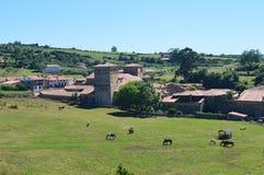 Ισπανικό αγροτικό τοπίο με τα άλογα στοκ φωτογραφία με δικαίωμα ελεύθερης χρήσης