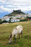 Ισπανικό τοπίο με ένα κάστρο και ένα άλογο Στοκ Φωτογραφίες