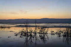 Ισραήλ νεκρή θάλασσα αυγή Στοκ φωτογραφία με δικαίωμα ελεύθερης χρήσης