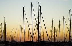 Ιστοί και ηλιοβασίλεμα Στοκ Εικόνες