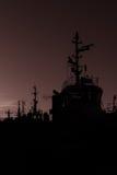 Ιστοί στο ηλιοβασίλεμα στοκ φωτογραφία με δικαίωμα ελεύθερης χρήσης