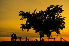 ιστορία αγάπης φιλήματος κοριτσιών κήπων αγοριών Ζεύγος στο ηλιοβασίλεμα Σκιαγραφία των εραστών Στοκ Εικόνα