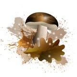 Ιστορία φθινοπώρου με το μανιτάρι και το δρύινο φύλλο με την επίδραση watercolor, διανυσματική απεικόνιση Στοκ εικόνα με δικαίωμα ελεύθερης χρήσης