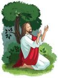 Ιστορίες Βίβλων του Ιησού Η αγωνία στον κήπο Στοκ Εικόνα