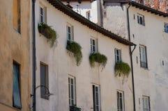 Ιστορικά κτήρια στην πλατεία del Anfiteatro Lucca, Τοσκάνη, Ιταλία Στοκ Εικόνες