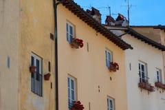 Ιστορικά κτήρια στην πλατεία del Anfiteatro Lucca, Τοσκάνη, Ιταλία Στοκ Εικόνα
