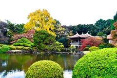 Ιστορικοί κόκκινοι σφένδαμνος της Ταϊβάν περίπτερων της Ιαπωνίας και πάρκο μπονσάι στοκ εικόνα