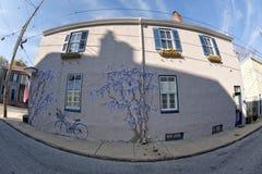Ιστορικό χρωματισμένο σπίτι της Μέρυλαντ Annapolis Στοκ Εικόνα