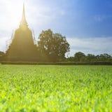 ιστορικό sukhothai Ταϊλάνδη πάρκων Στοκ εικόνα με δικαίωμα ελεύθερης χρήσης