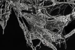 Ιστός αράχνης φρίκης ή Ιστός αραχνών στο αρχαίο ταϊλανδικό σπίτι που απομονώνεται στο μαύρο υπόβαθρο Στοκ Εικόνες