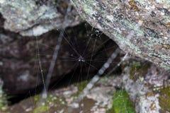 Ιστός αράχνης φρίκης τριγώνων ή Ιστός αραχνών που απομονώνεται στο μαύρο υπόβαθρο, οριζόντια φωτογραφία Στοκ φωτογραφίες με δικαίωμα ελεύθερης χρήσης