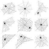 Ιστός αραχνών με μια αράχνη ελεύθερη απεικόνιση δικαιώματος
