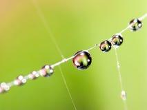 Ιστός αραχνών waterdrops Στοκ Φωτογραφίες