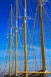 Ιστός ενάντια στον μπλε θερινό ουρανό Στοκ εικόνες με δικαίωμα ελεύθερης χρήσης