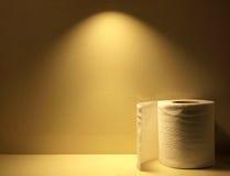 Ιστός κάτω από το μαλακό φως Στοκ Φωτογραφία