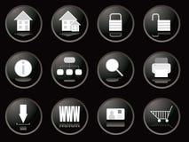 Ιστός κουμπιών βατόμουρων Στοκ Εικόνες