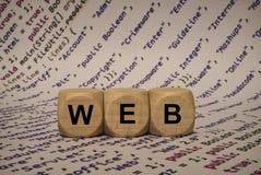 Ιστός - κύβος με τις επιστολές και λέξεις από τον υπολογιστή, λογισμικό, κατηγορίες Διαδικτύου, ξύλινοι κύβοι Στοκ Εικόνες