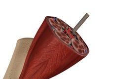 Ιστός μυών ελεύθερη απεικόνιση δικαιώματος