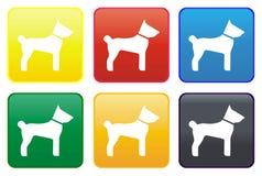 Ιστός σκυλιών κουμπιών Στοκ εικόνα με δικαίωμα ελεύθερης χρήσης