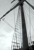 Ιστός του παλαιού γαλονιού Στοκ φωτογραφίες με δικαίωμα ελεύθερης χρήσης