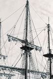 Ιστός του παλαιού γαλονιού Στοκ εικόνα με δικαίωμα ελεύθερης χρήσης