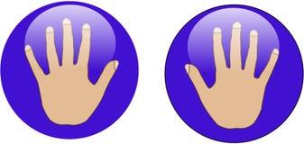 Ιστός χεριών γυαλιού κουμπιών Στοκ εικόνα με δικαίωμα ελεύθερης χρήσης