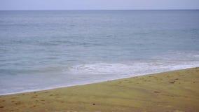 Ισχυρά σπασίματα κυμάτων κατά μήκος της ακτής απόθεμα βίντεο