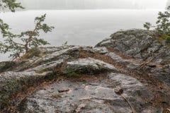 Ισχυρή θερινή βροχή Στοκ Εικόνες